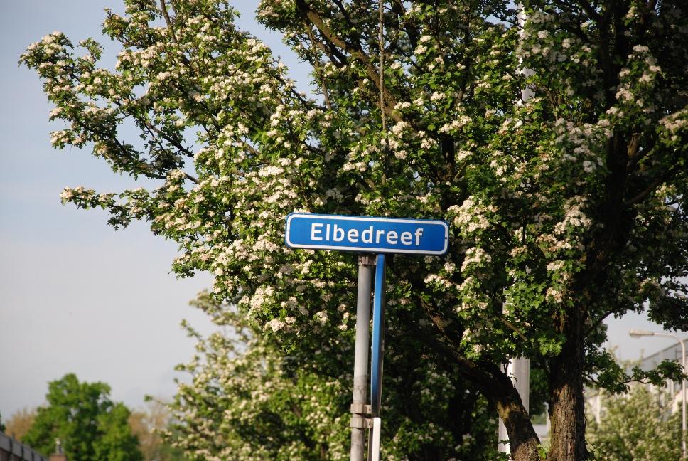 http://www.harmjschoonhoven.com/rivieren-en-dreven/borden/elbe.jpg