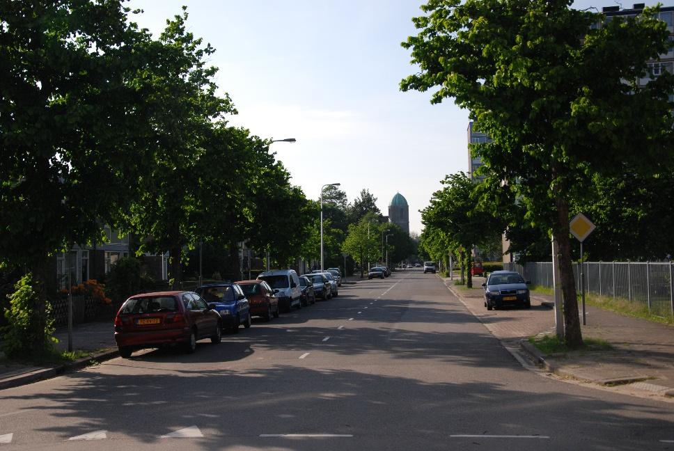 http://www.harmjschoonhoven.com/rivieren-en-dreven/dreven/bere.jpg