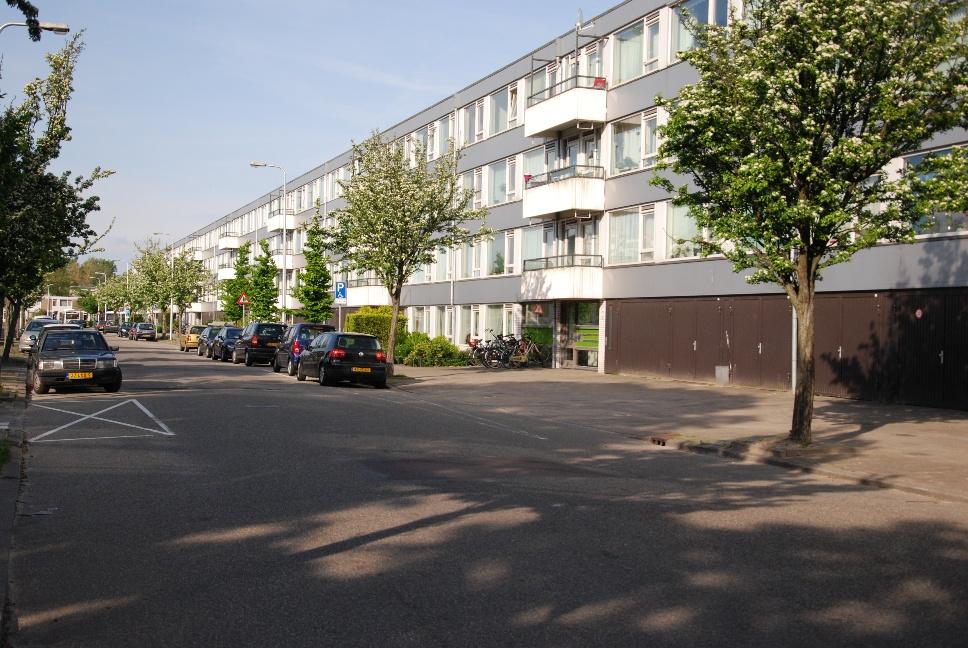 http://www.harmjschoonhoven.com/rivieren-en-dreven/dreven/elbe.jpg