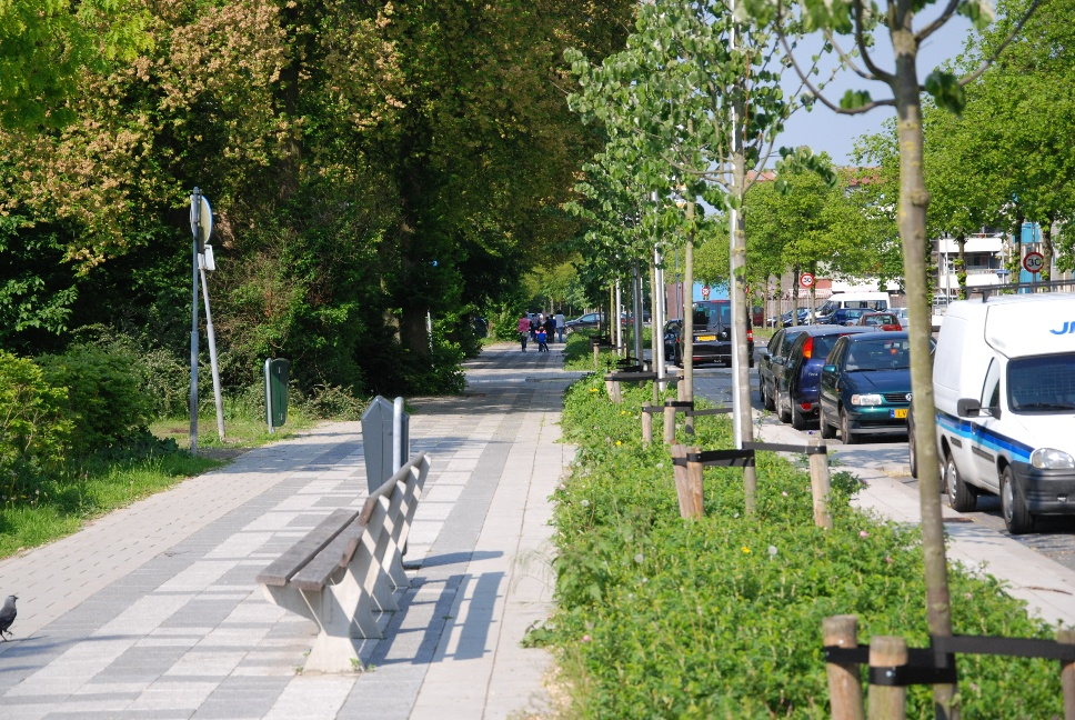 http://www.harmjschoonhoven.com/rivieren-en-dreven/dreven/gamb.jpg