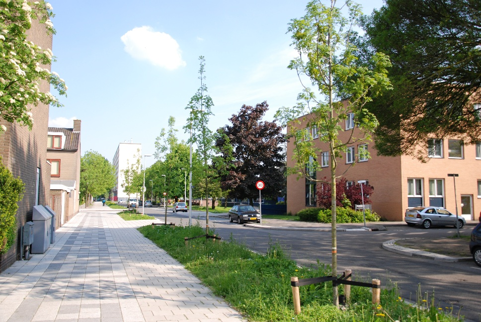 http://www.harmjschoonhoven.com/rivieren-en-dreven/dreven/indu.jpg