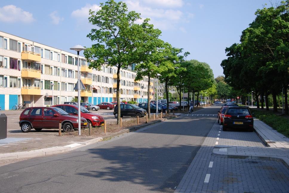 http://www.harmjschoonhoven.com/rivieren-en-dreven/dreven/kwan.jpg