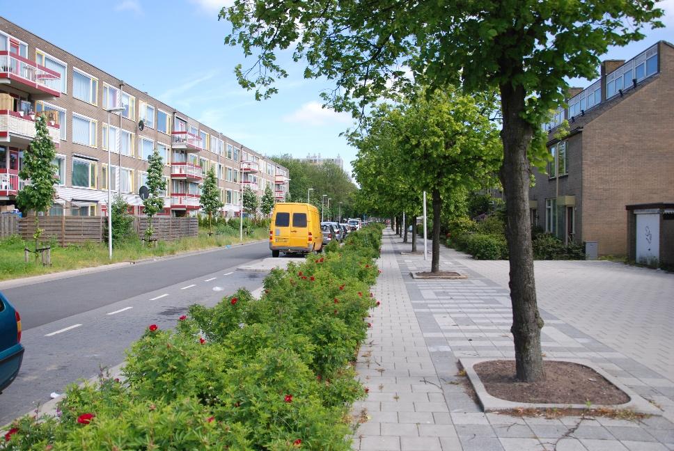 http://www.harmjschoonhoven.com/rivieren-en-dreven/dreven/meko.jpg
