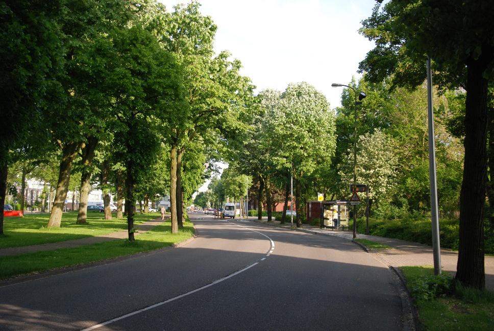 http://www.harmjschoonhoven.com/rivieren-en-dreven/dreven/neck.jpg