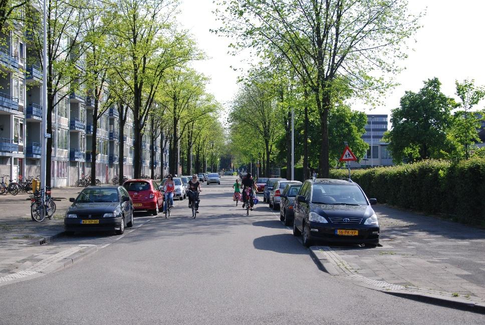 http://www.harmjschoonhoven.com/rivieren-en-dreven/dreven/taag.jpg