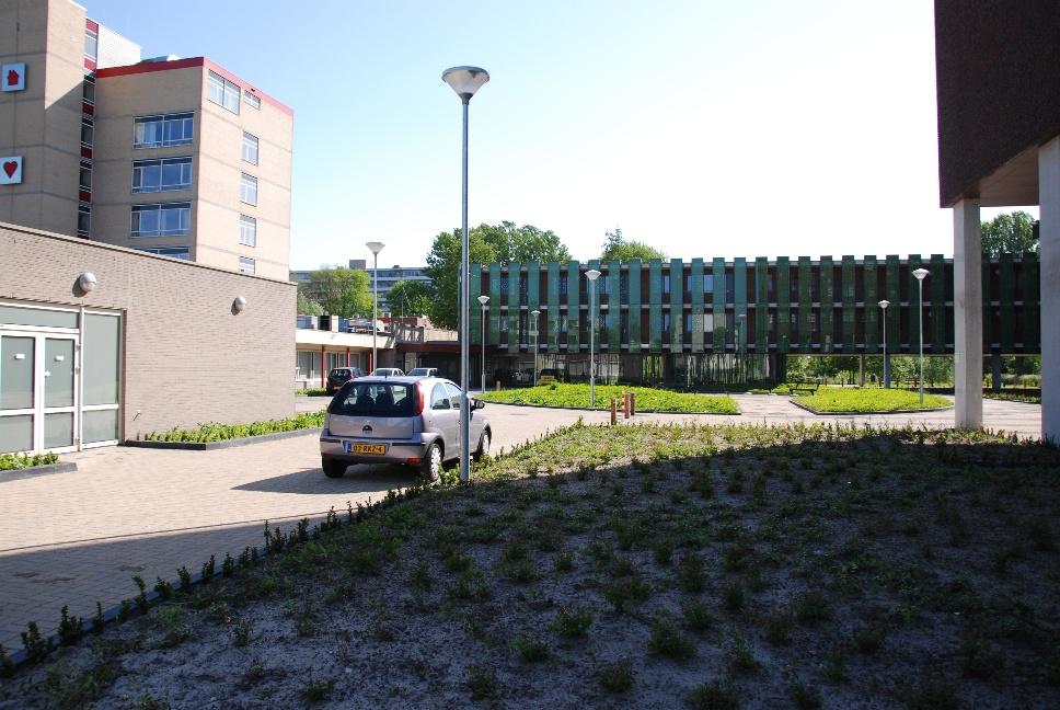 http://www.harmjschoonhoven.com/rivieren-en-dreven/dreven/werr.jpg