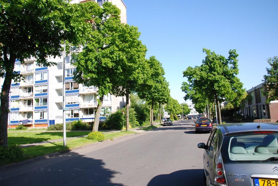 http://www.harmjschoonhoven.com/rivieren-en-dreven/dreven/weze.jpg